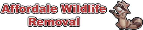 Affordable Wildlife Removal, LLC